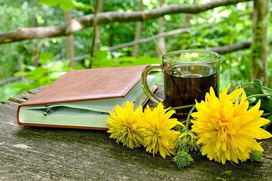Garden-Diary