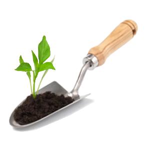 Hand Held Gardening Tool