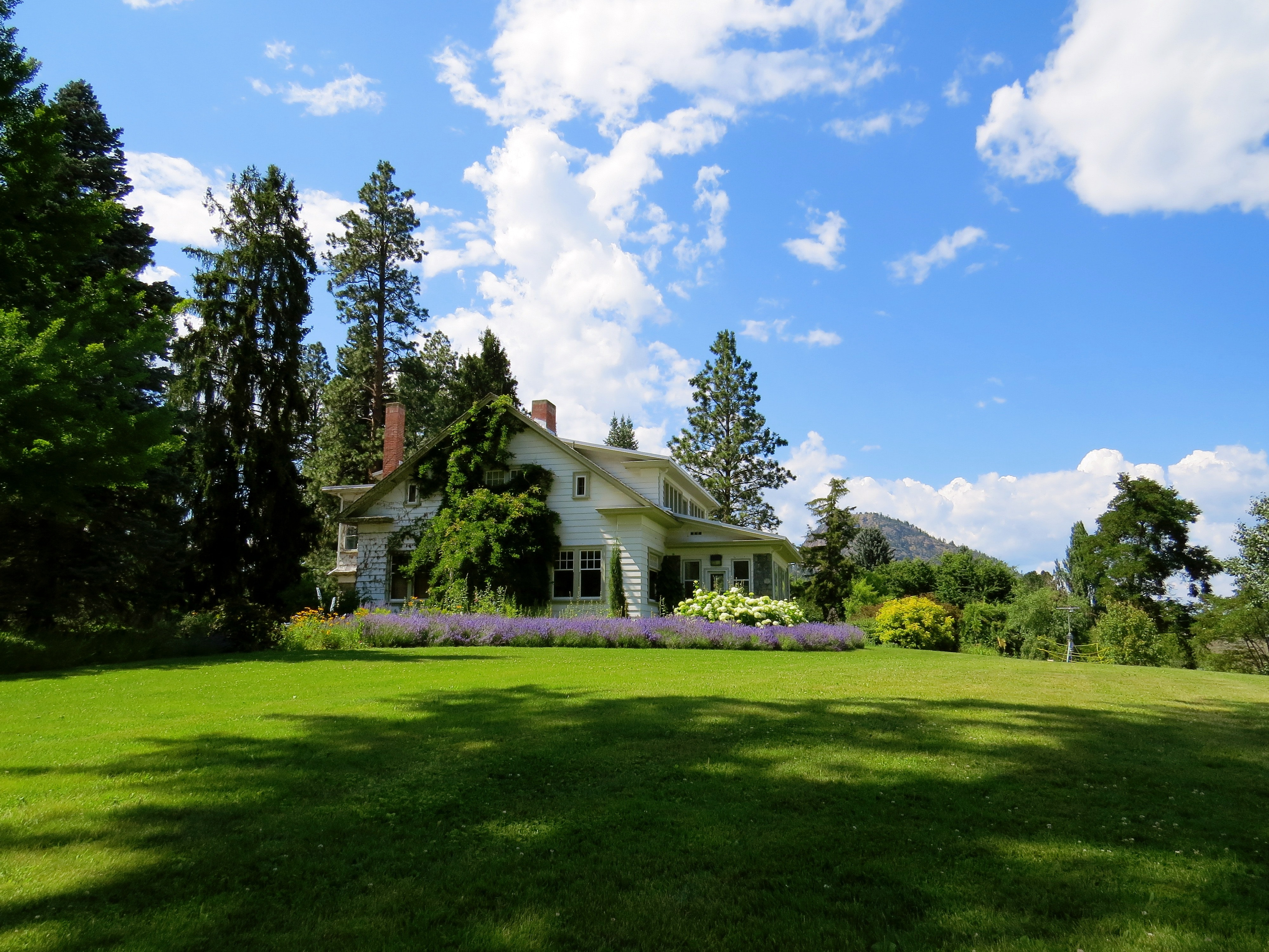 lawn landscaping for home sellers