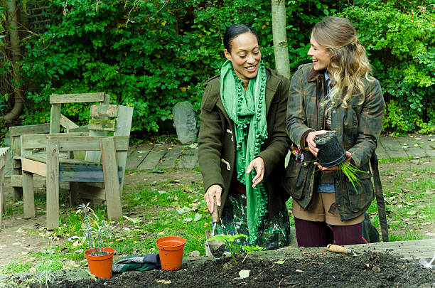 Cold Weather Gardening: What to Plant in the Fall?