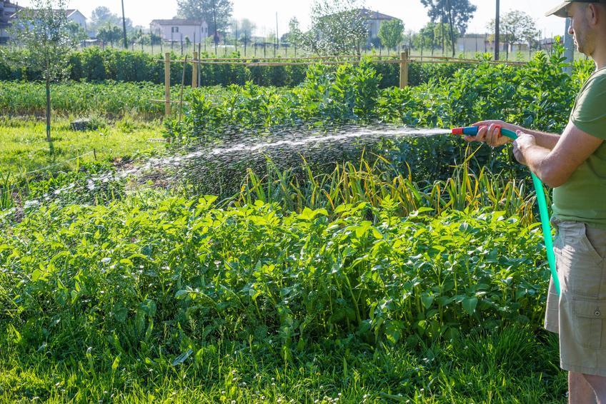 commercial garden hose-1